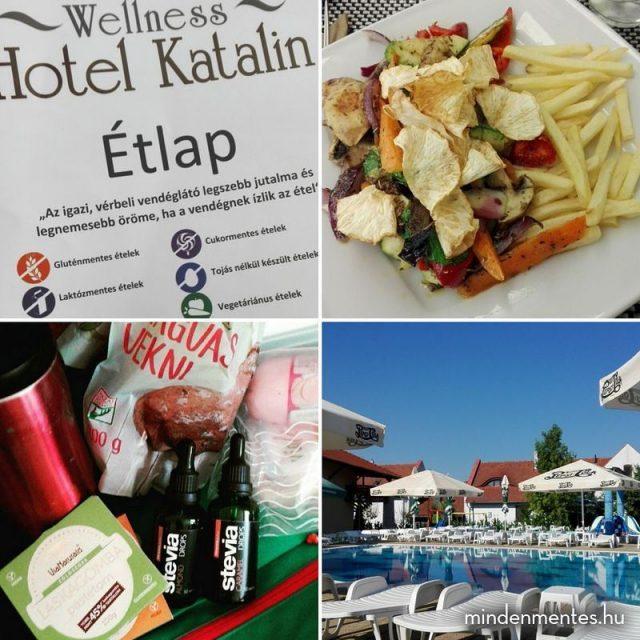 Mindenmentes nyarals  Wellness Hotel Katalin ajnl avagy milyen azhellip