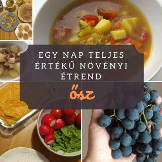 Egy nap teljes értékű növényi étrend - ősz |mindenmentes.hu