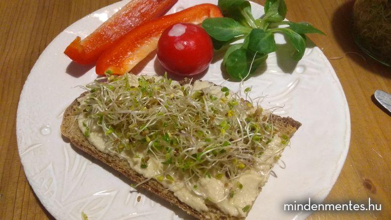 Egy nap teljes értékű növényi étrend - tavasz |mindenmentes.hu